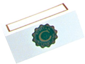 PLACE CARD, pkg. of 50