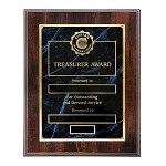 TREASURER AWARD